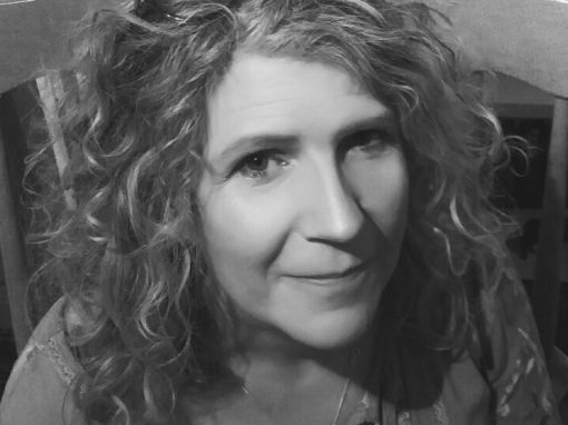 The Four Kingdoms – Judith Millar
